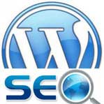 setup configure use all in one SEO