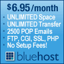 Advantages and disadvantages of VPS hosting - Bluehost VPS hosting