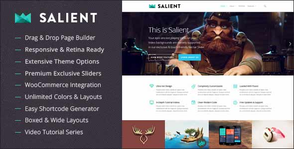 Salien, top selling wordpress theme